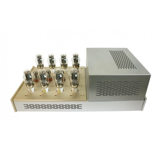 Canary Audio M3000 Monoblock Amplifiers