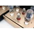 Canary Audio M350 Monoblock Amplifiers