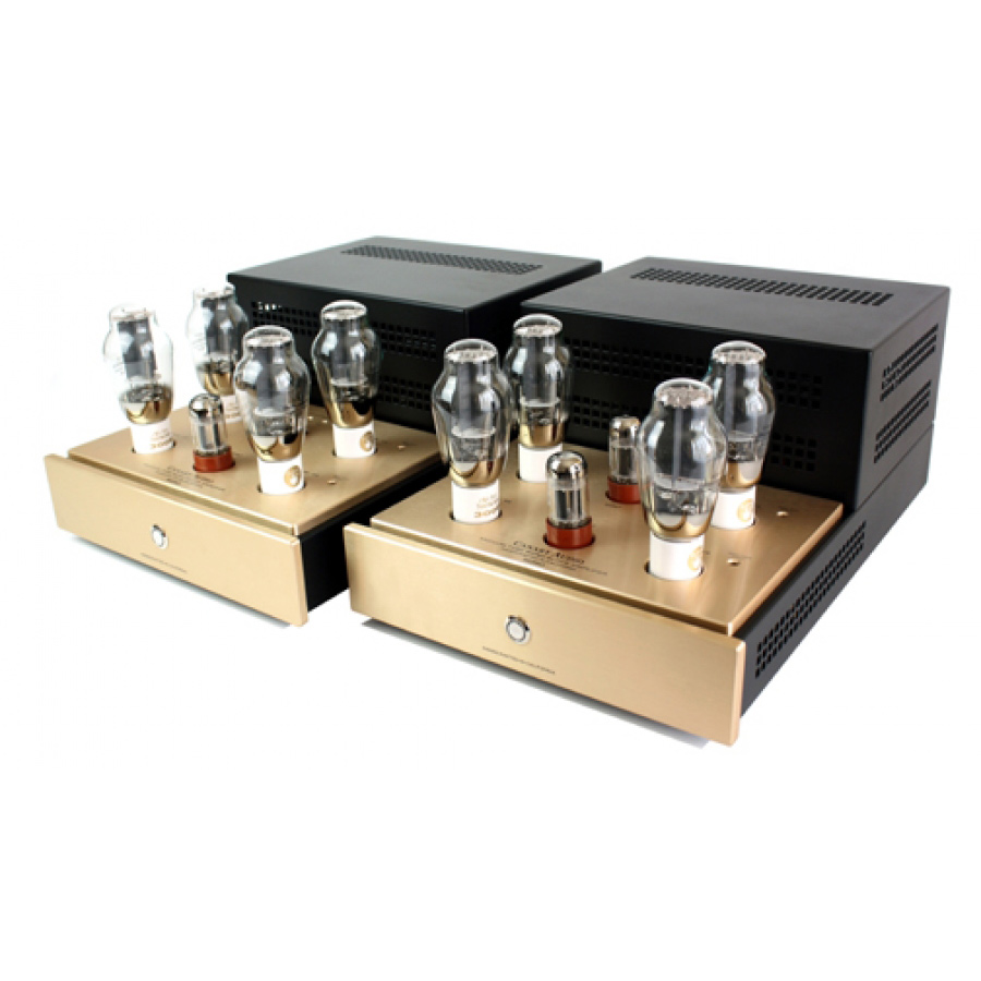 Canary Audio M350 Monoblock Amplifiers